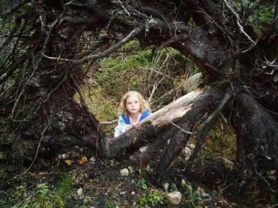 Ship Harbor Nature Trail: Daughter alogn trail