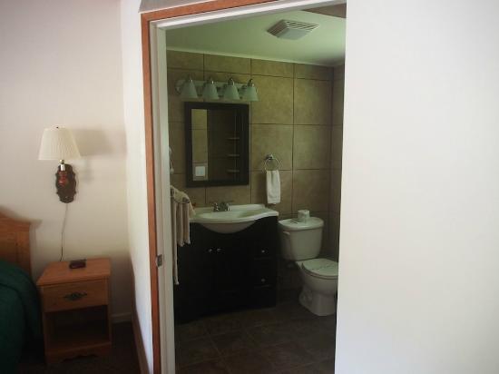Motel Trees / Bathroom