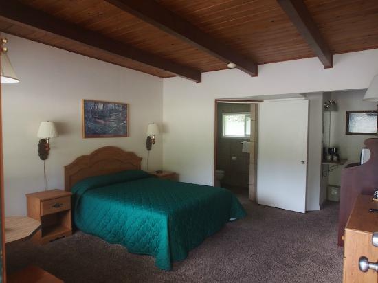 Motel Trees Room