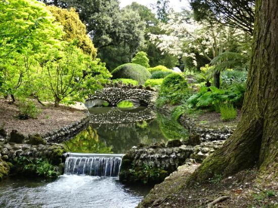 Little brooks run through the gardens - Picture of West Dean Gardens ...