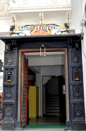 Photo of The Tiger Udaipur