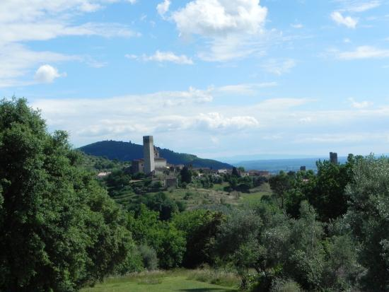 Villa Bracali: Vista