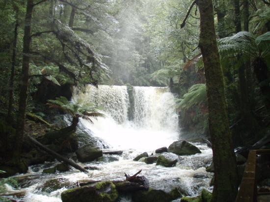 Glenfern, Avustralya: Horseshoe Falls, Mt Field NP