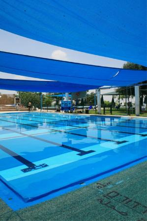 Wahat al-Salam Guest House and Conference Center: pool