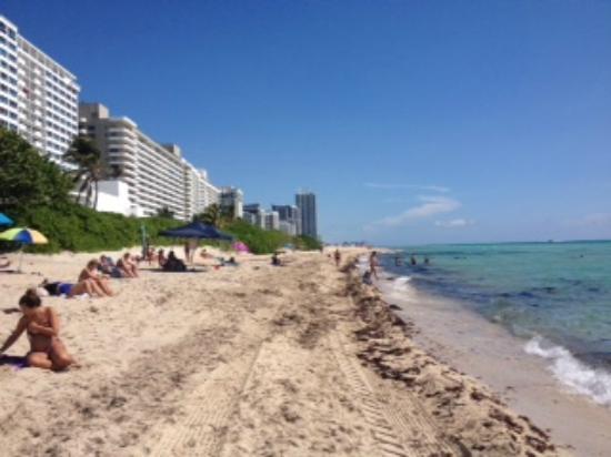 Design Suites Miami Beach Praia Do Hotel