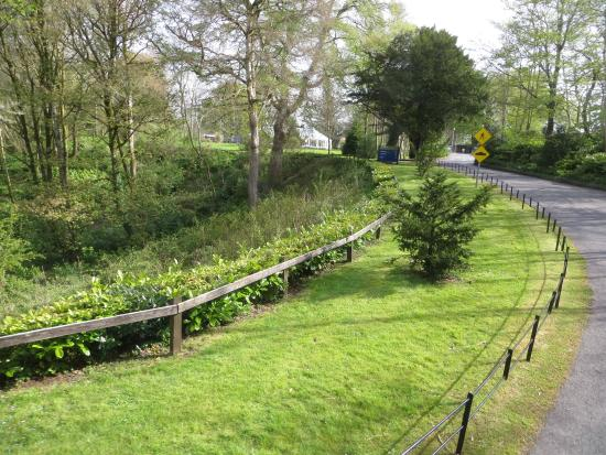 National Museum of Ireland - Country Life : Serene winding entrance with narrow pathways