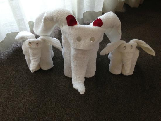 Fancourt: Towel arrangement