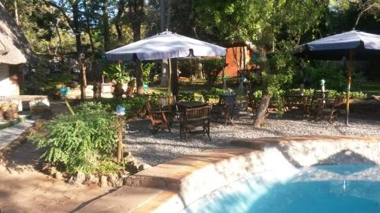 Victoria Falls Backpackers: Pool area