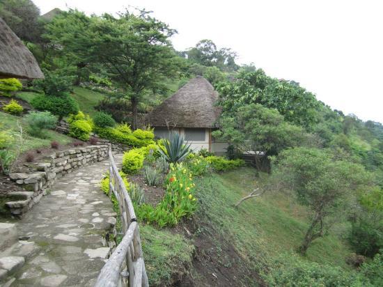 Enganzi Game Lodge: Stunningly beautiful stonned walkways