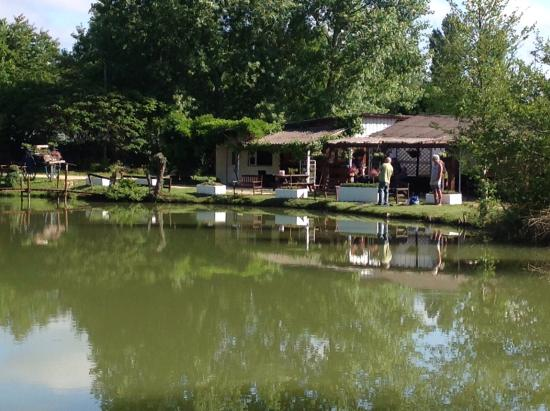 Twin Lakes: View of the bar