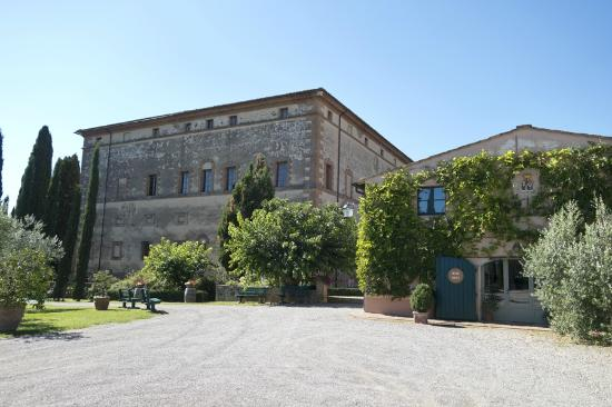 Argiano Vineyards