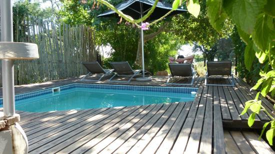 Kleiner Pool kleiner pool zum abkühlen picture of the house kasane