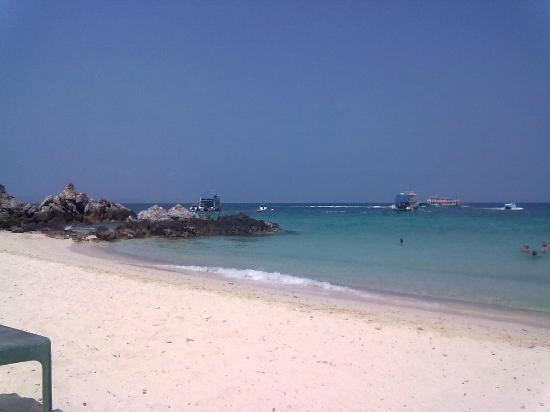 вот такой пляж на ко-Лане - Picture of Koh Lan (Coral Island), Pattaya - Trip...