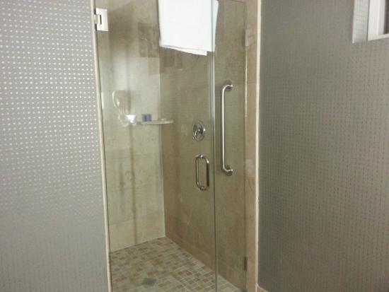Radisson Hotel Chatsworth: Shower