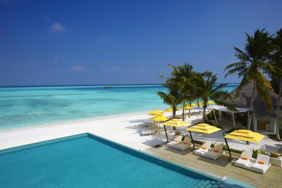 Niyama Private Islands Maldives: Beach and Pool