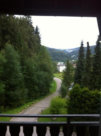 Berghotel Tannenhof: View from balcony
