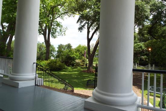Natchez, MS: View from the front porch