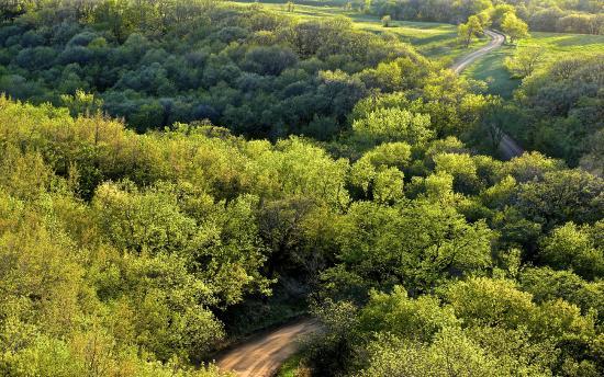 Sisseton, Dakota Południowa: View over the South Dakota countryside from Nicollet Tower, early spring.