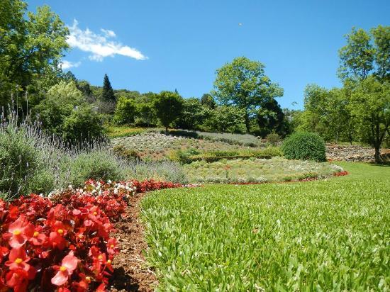 Jardins picture of le jardin parque de lavanda gramado for Jardines de lavanda