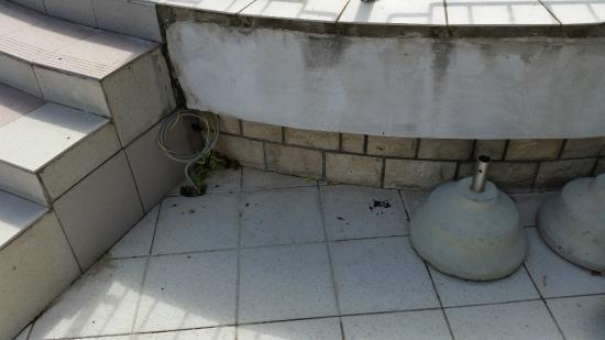 Remisens Premium Hotel Metropol: Außenbereich neben d Pool
