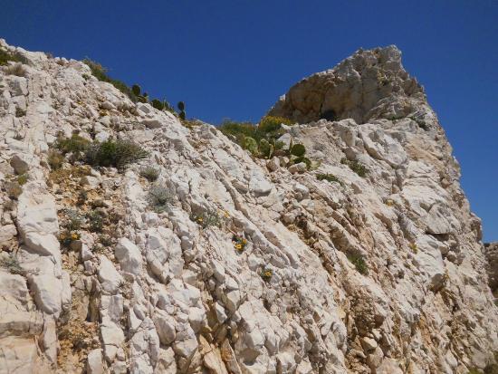 Ile ratonneau picture of marseille bouches du rhone for Marseille bouche du rhone