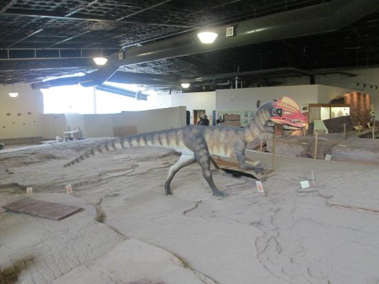 The Lake Bed Picture Of St George Dinosaur Discovery Site At Johnson Farm Tripadvisor