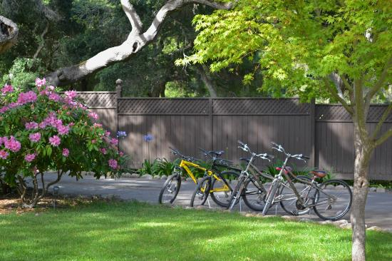 Stonepine Estate Resort: Bikes for the 3 1/2 Miles of Trails
