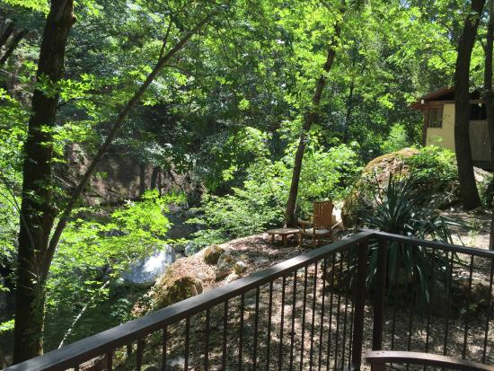 Tassajara Zen Mountain Center: Looking up creek