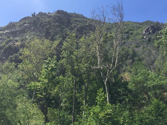 Tassajara Zen Mountain Center : Hiking