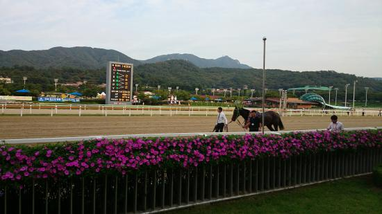 LetsRun Park Seoul(Seoul Racecourse Park)