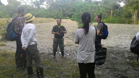 Tabin Wildlife Reserve: Mud volcano