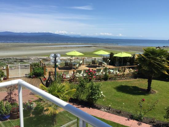 Buena Vista by the Sea: Buiten en binnen