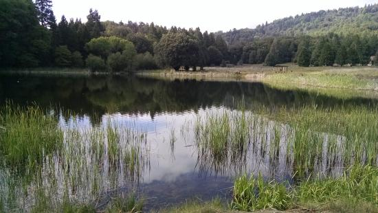 Palomar Mountain State Park: Doane Lake