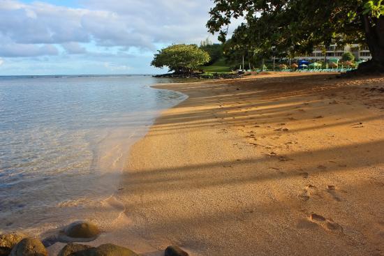Puu Poa Beach Picture Of Puu Poa Beach Princeville Tripadvisor