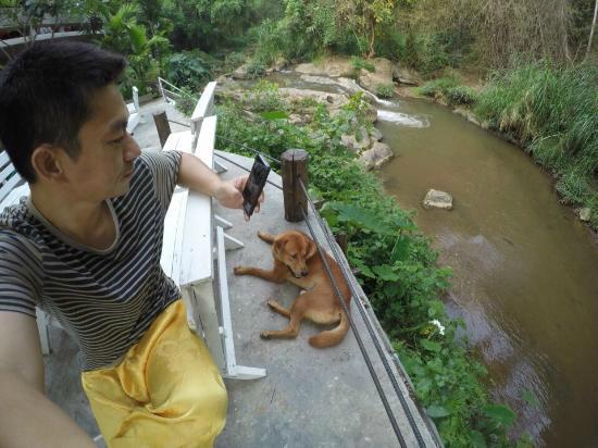 At Nata Chiangmai Chic Jungle: บรรยากาศริมน้ำ