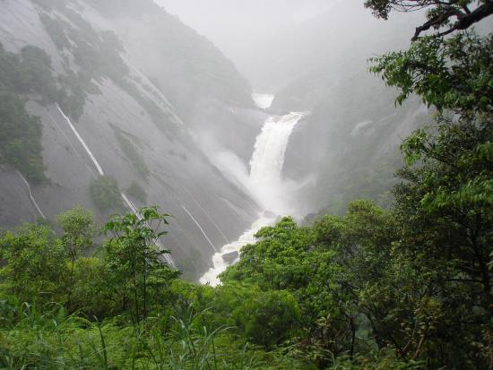 Senhiro Waterfall: 元気な千尋の滝