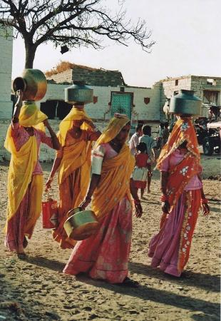 Rajasthan Tour Private Day Tour