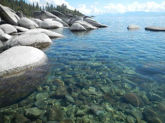 Truckee Donner Lodge: Nothing clearer than the water in Lake Tahoe