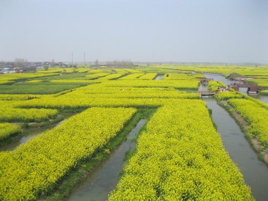 Xinghua, Κίνα: 小島