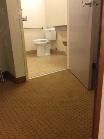 Red Roof Inn Evansville: Dirty mirror and carpet