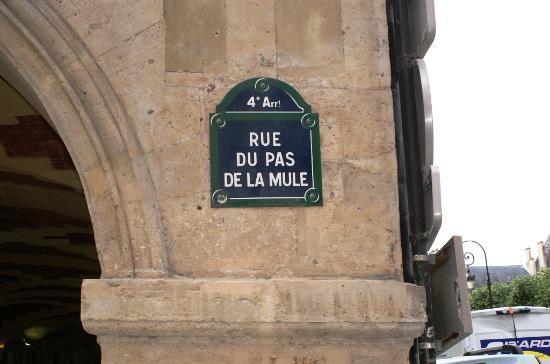 Jardin louis xiii et fontaine picture of place des for Jardin 54 rue de fecamp