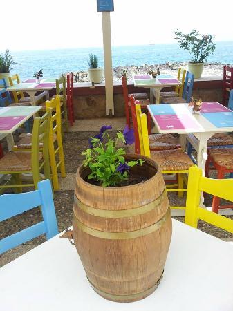 Retro Cafe - Taverna