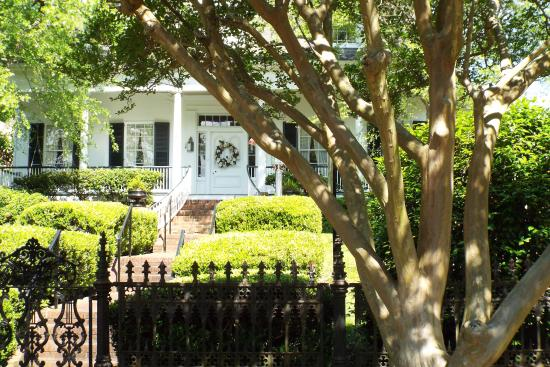 Natchez, MS: Just one of the houses we saw on the carriage ride