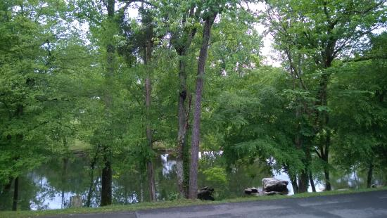 Big Meadow Family Campground: Beautiful view of river from the site, plus the pleasant sound of rapids just downstream from th