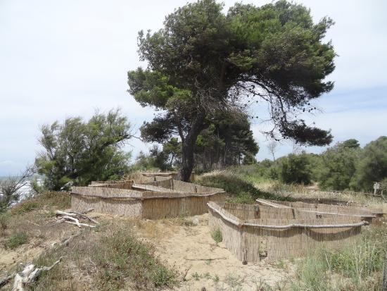 Parco Costiero della Sterpaia