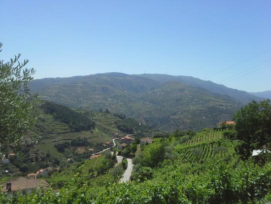Casa de Santo Antonio de Britiande: Viniards sightseeing in the region