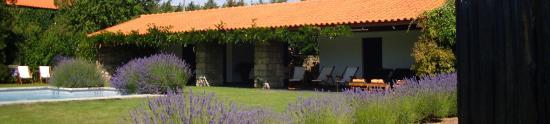 Casa de Santo Antonio de Britiande: Breakfast by the pool