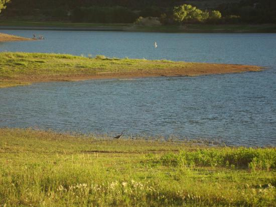 Harvey Gap State Park: wildlife, cranes, geese, ducks are seen every day on the reservoir