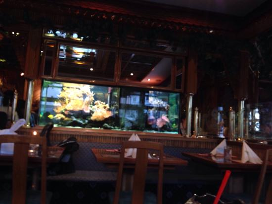 Thai Rainbow Garden: This place was gorgeous, service was fast, and it tasted great.