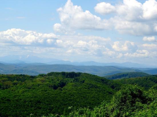 View across high peaks of Vienna Woods from summit of Hermannskogel